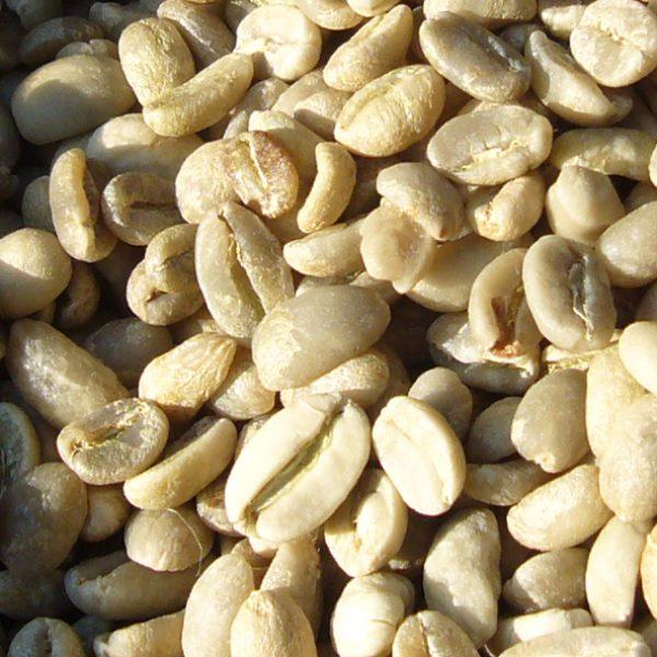 Wissen 010 - rohe Kaffeebohnen im Sack  - MAKRO